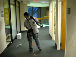 DC janitorial services